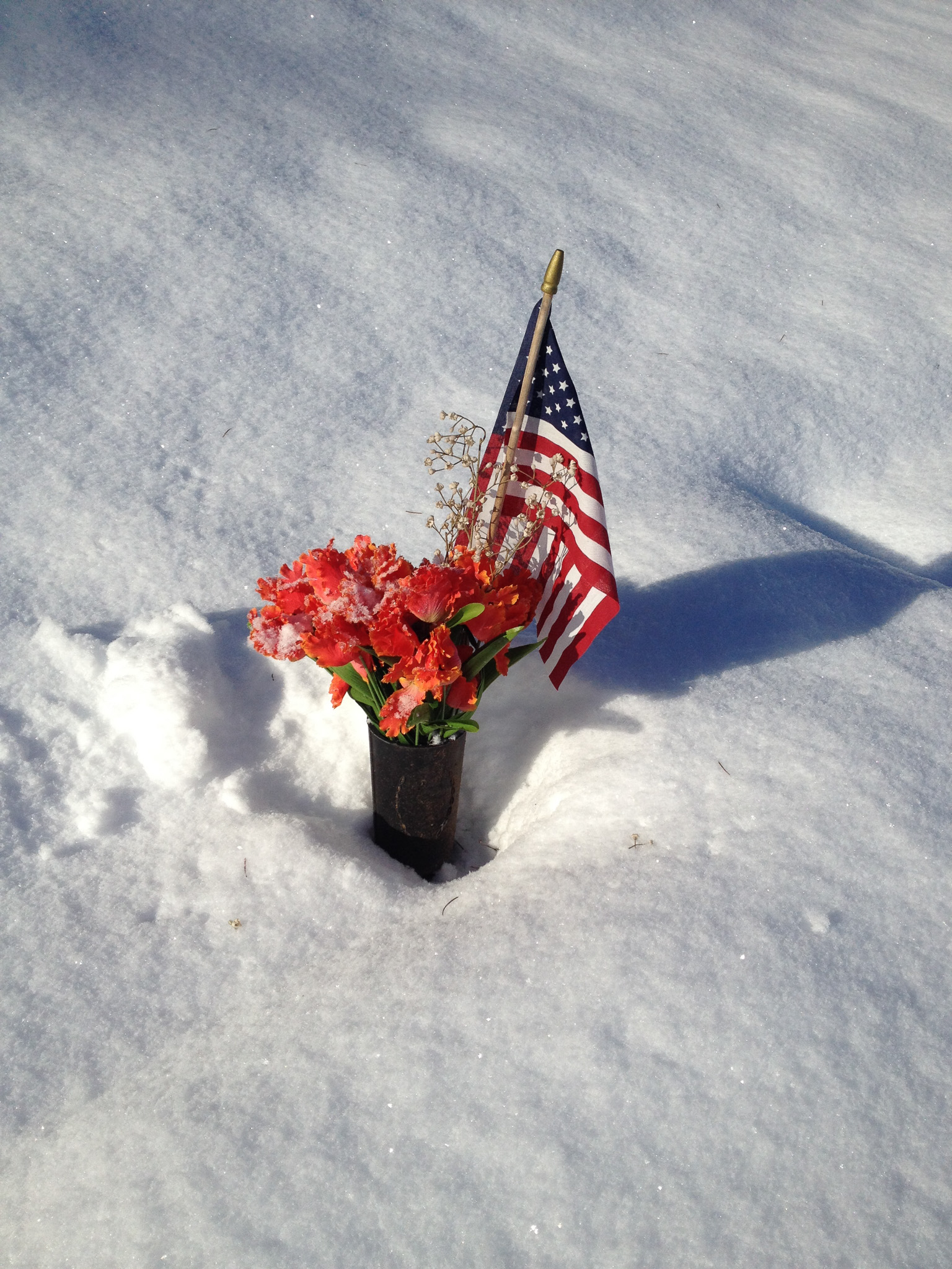 a US flag and flowers sitting in the snow in cottage grove