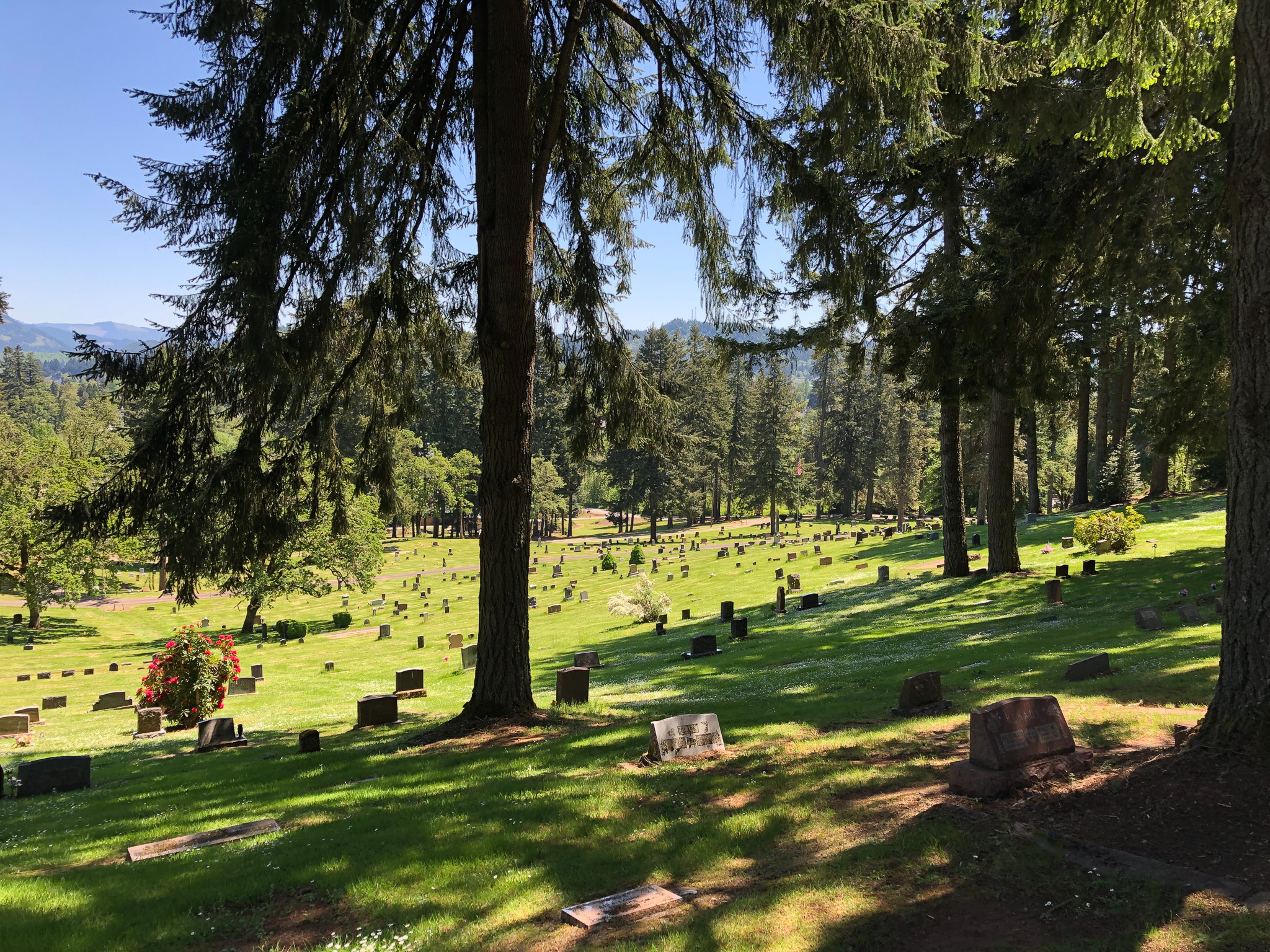 Photo of Fir Grove Cemetery