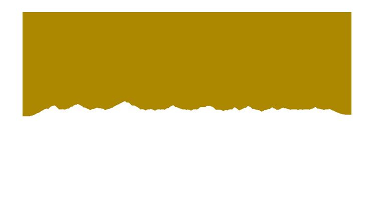 Unplugged gala logo