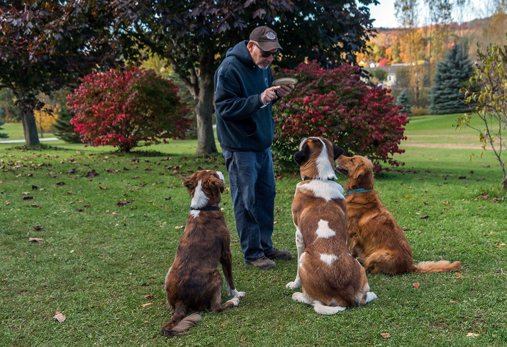 man training three dogs