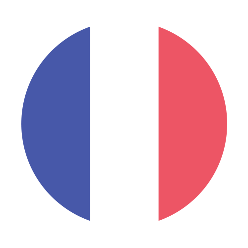 french flag image
