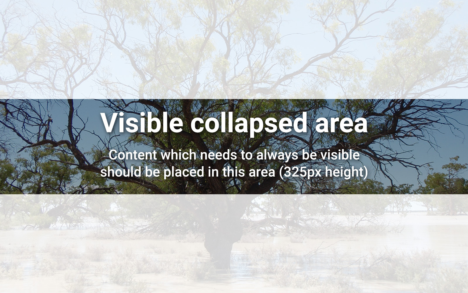 Visible collapsed area
