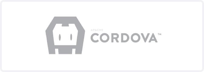 hybrid web application