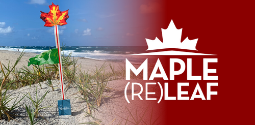 The Maple (Re)Leaf logo with a photo of the leaf