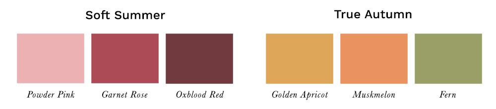 Soft Autumn Sister Palettes