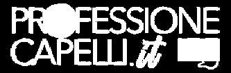 Professione Capelli
