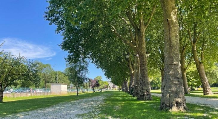 Parc du Jard à Saint-Dizier