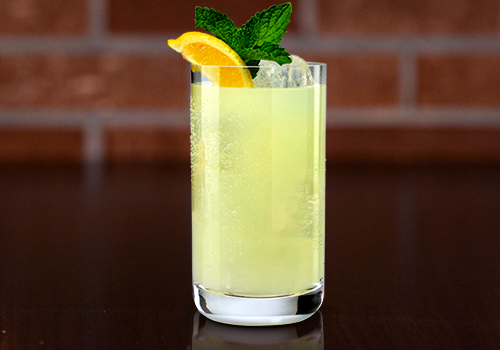 ice cold lemonade with lemon and mint in a small glass
