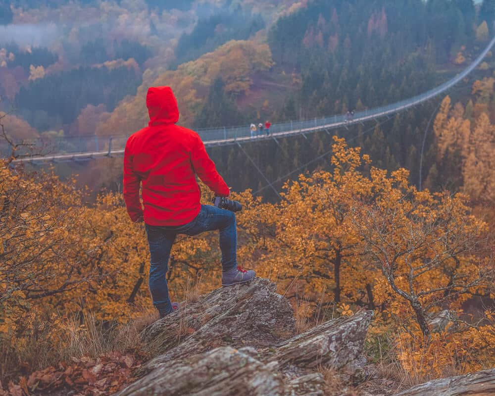 Man overlooking bridge in forest