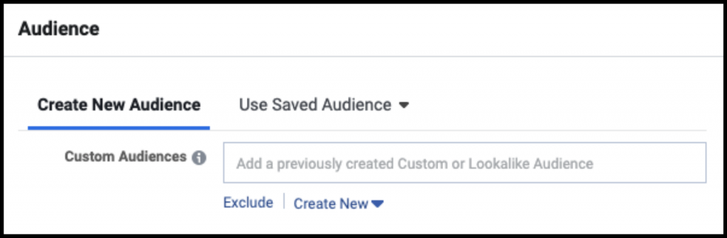 Facebook Ad allows you to custom your audience for different purposes