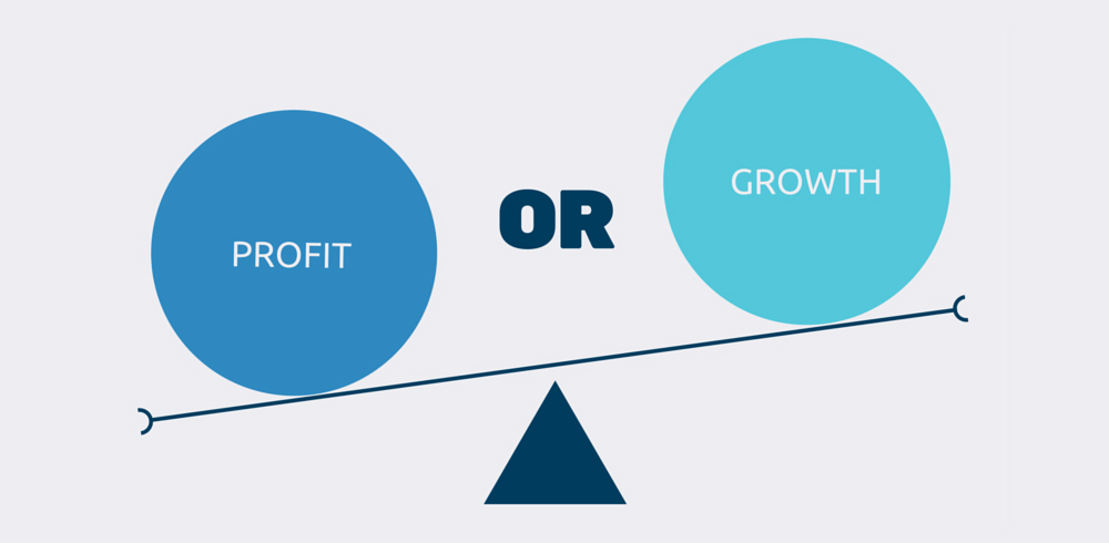 profit vs growth in business