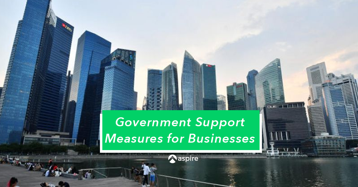 Government Support Measures for COVID-19