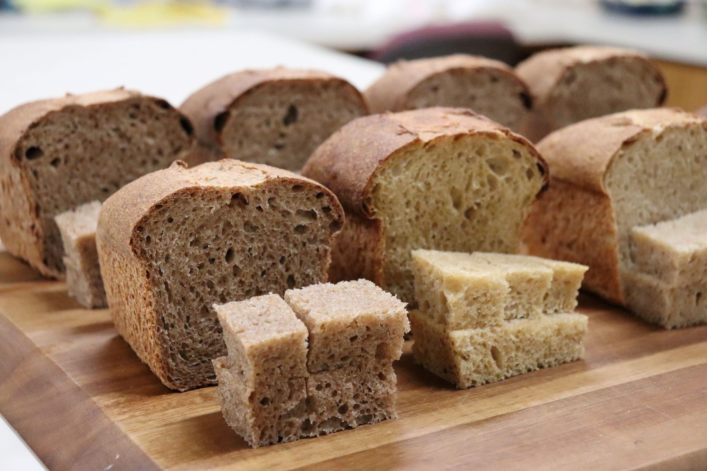 Simple Whole Wheat - Sourdough Starter