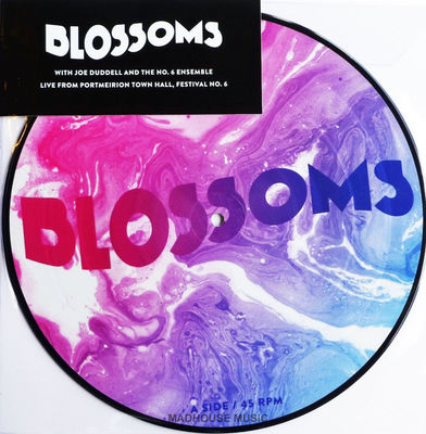 Blossoms - Picture Disc