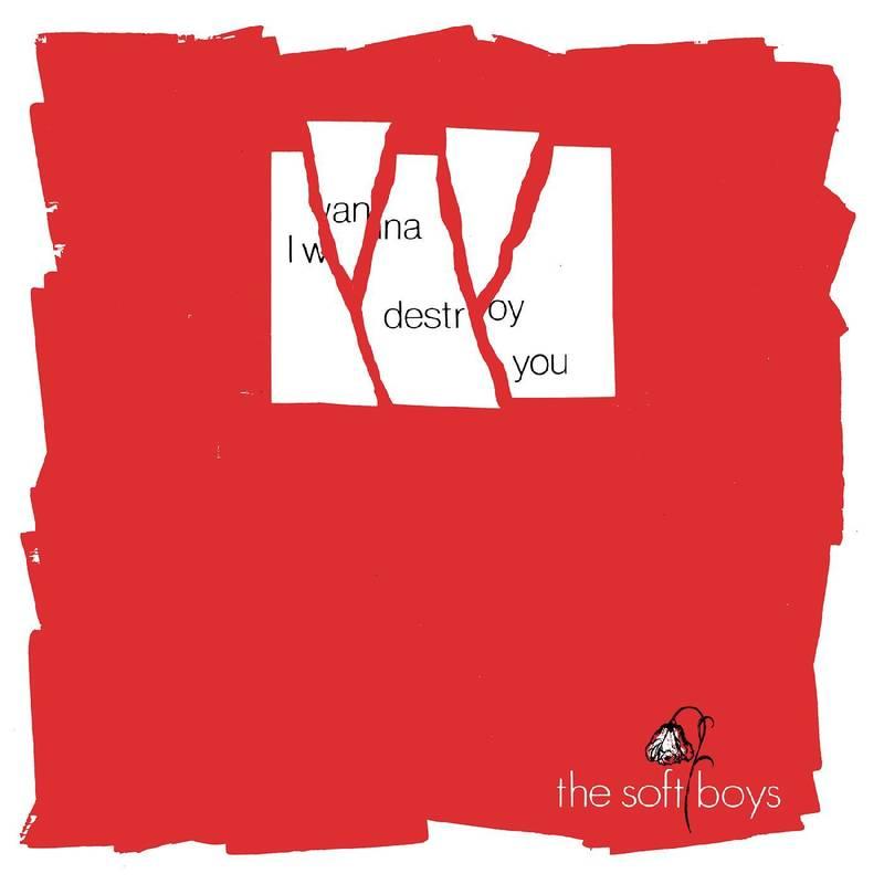 Soft Boys, The - I Wanna Destroy You / Near The Soft Boys (40th Anniversary Edition)