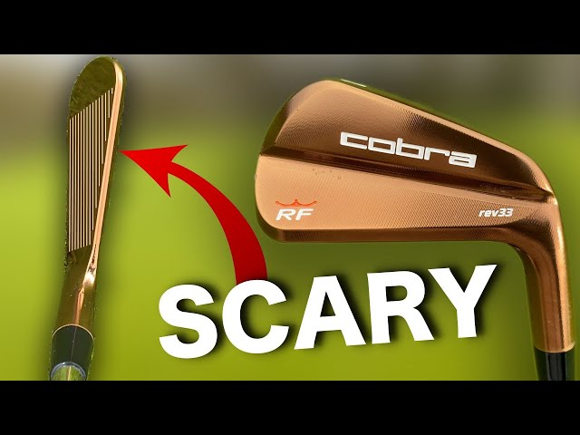 WORLDS SMALLEST BLADES | I use Rickie Fowlers irons!!