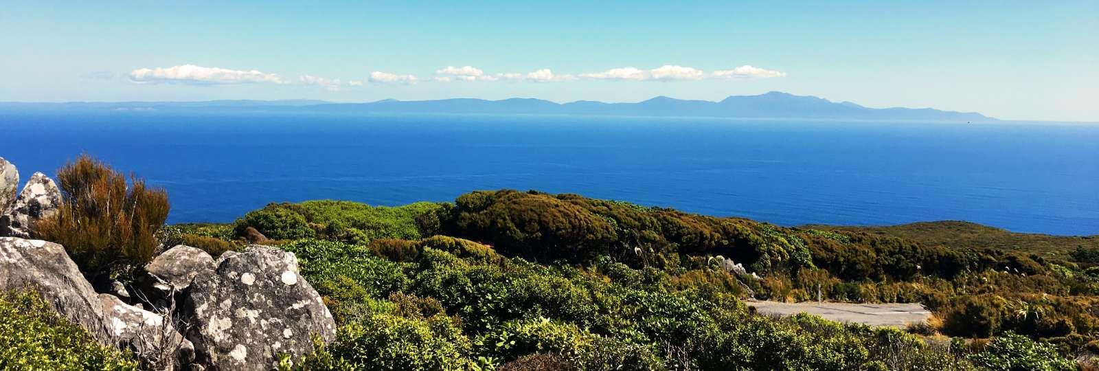 Cruising Stewart Island