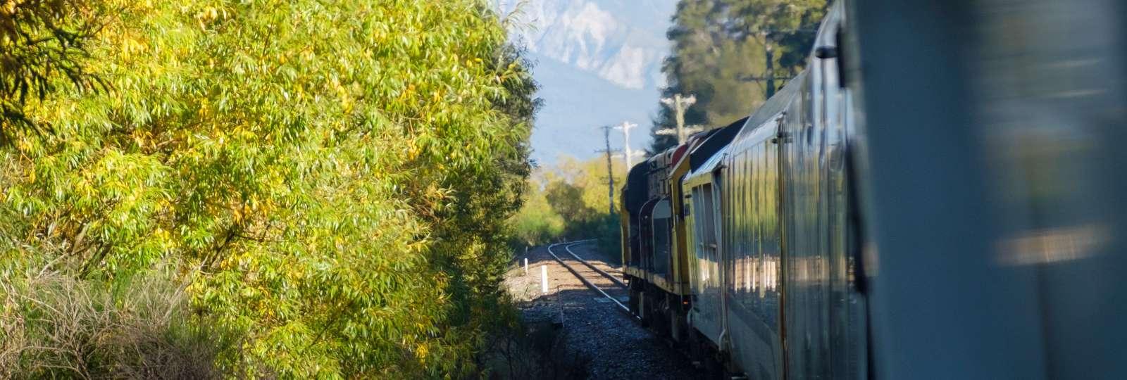 TranaAlphine Train