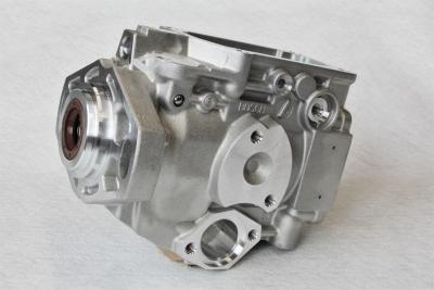 Bosch rotary pump housing