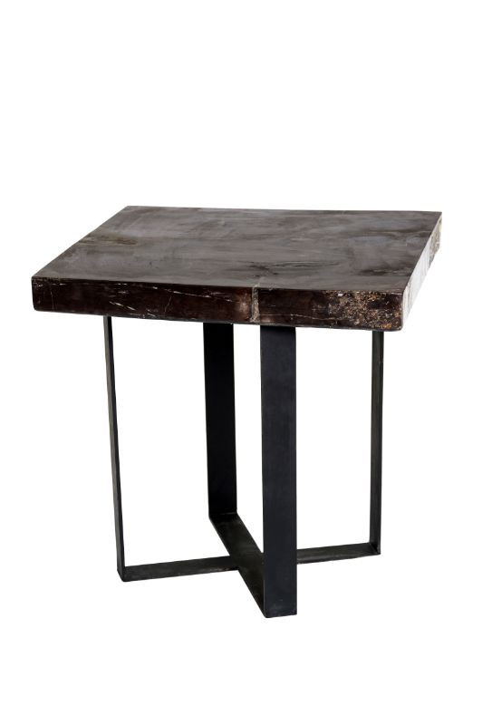 Fossilized wood square side table