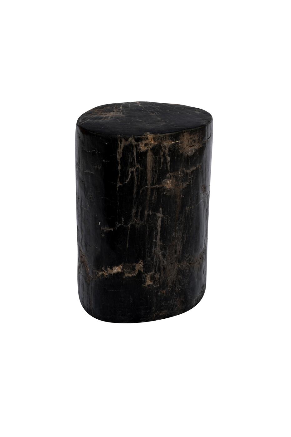 Tronco de madera fosilizada negro