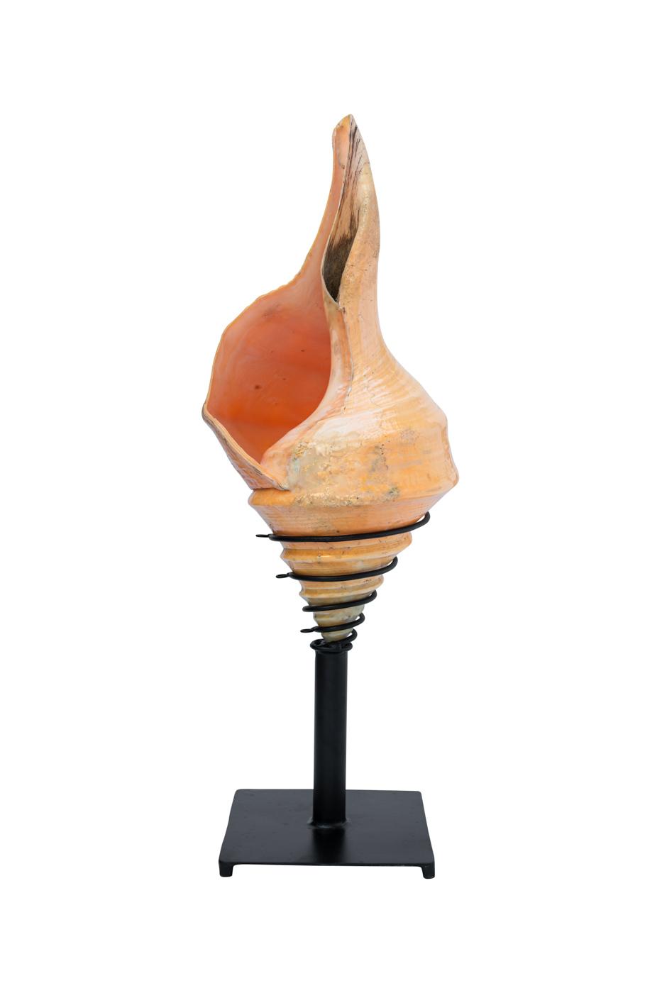 Lámpara de mesa caracol en punta