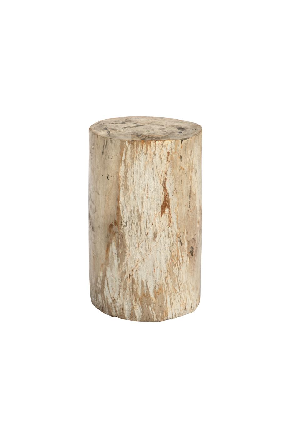 Tronco de madera fosilizada natural