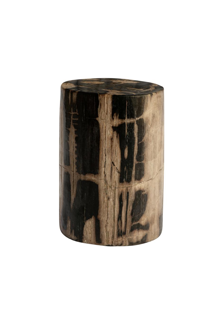 Tronco de madera fosilizada natural-negro