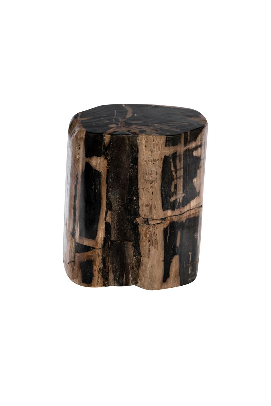 Tronco de madera fosilizada negro-natural