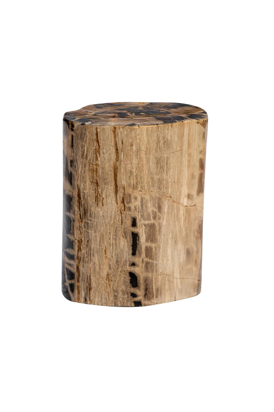 Tronco de madera fosilizado betas negras