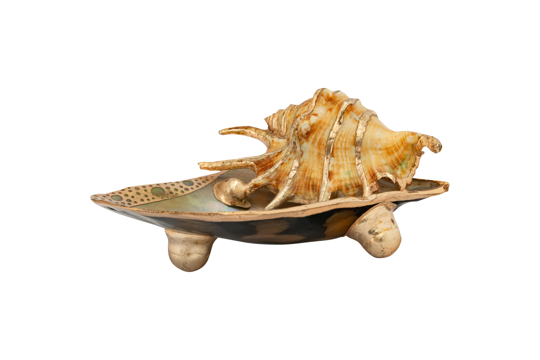 Natural snail soap dish