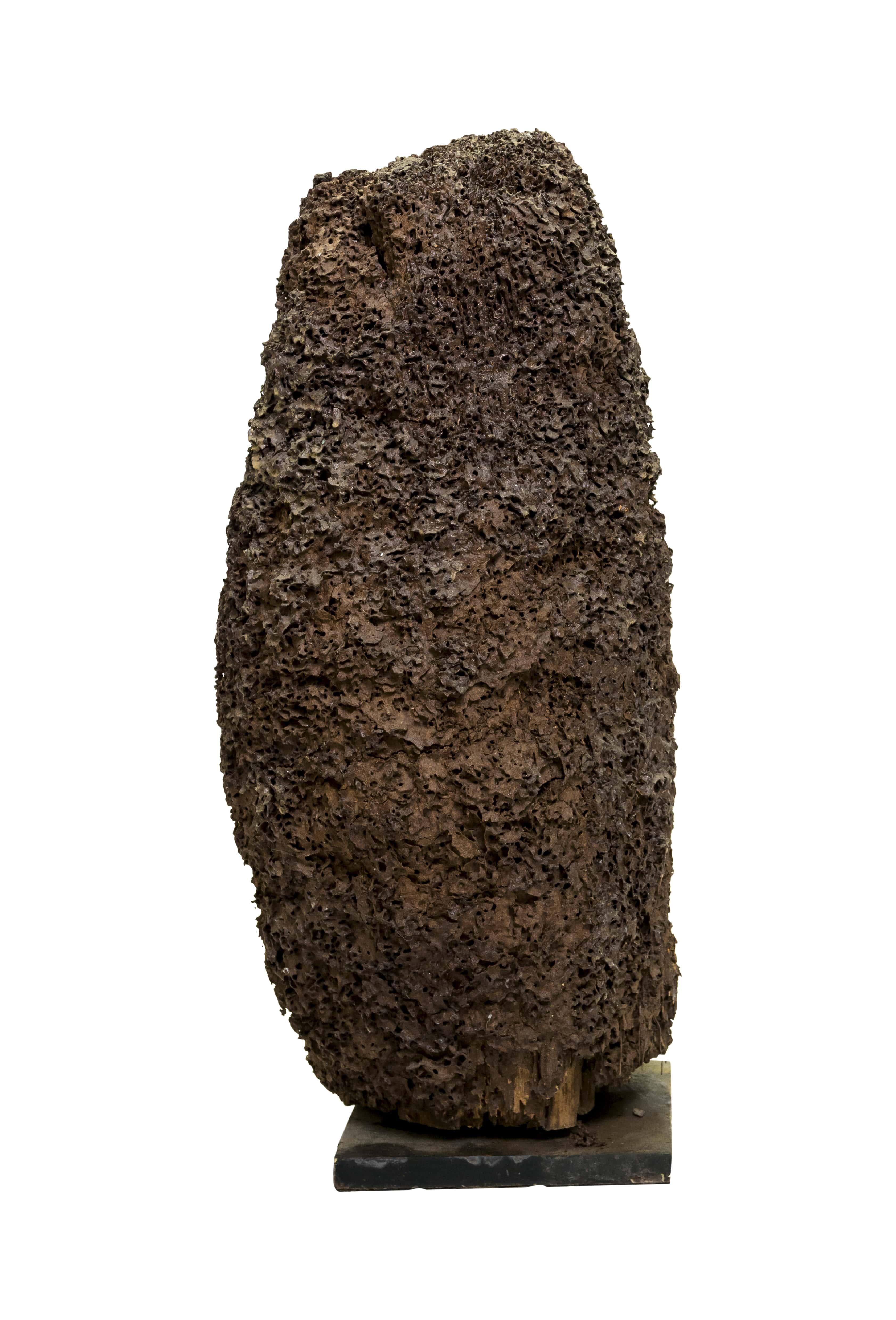 Natural decorative termite sculpture