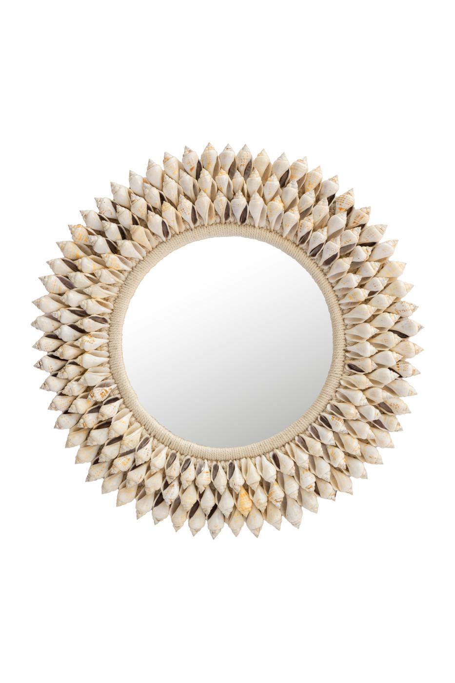 Natural snail shell mirror