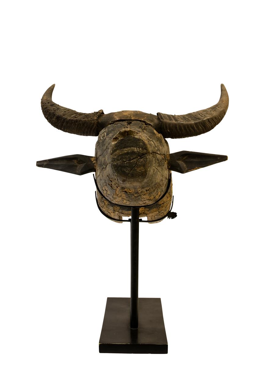 Cabeza de búfalo tallada en madera