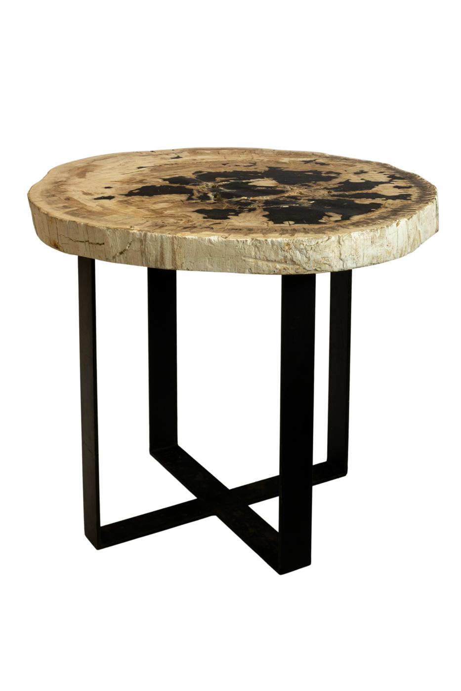 Fossilised wood side table - Oval
