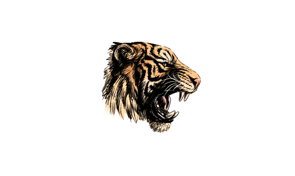 Official Tiger King Logo