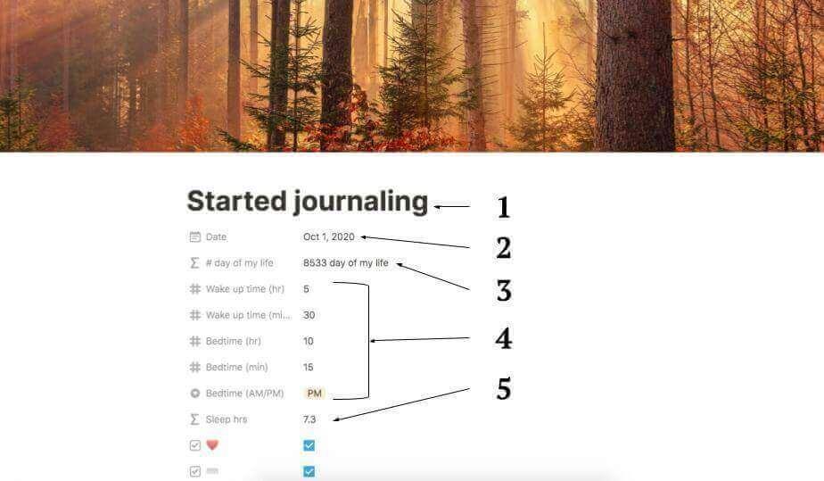 Minimalist Journal
