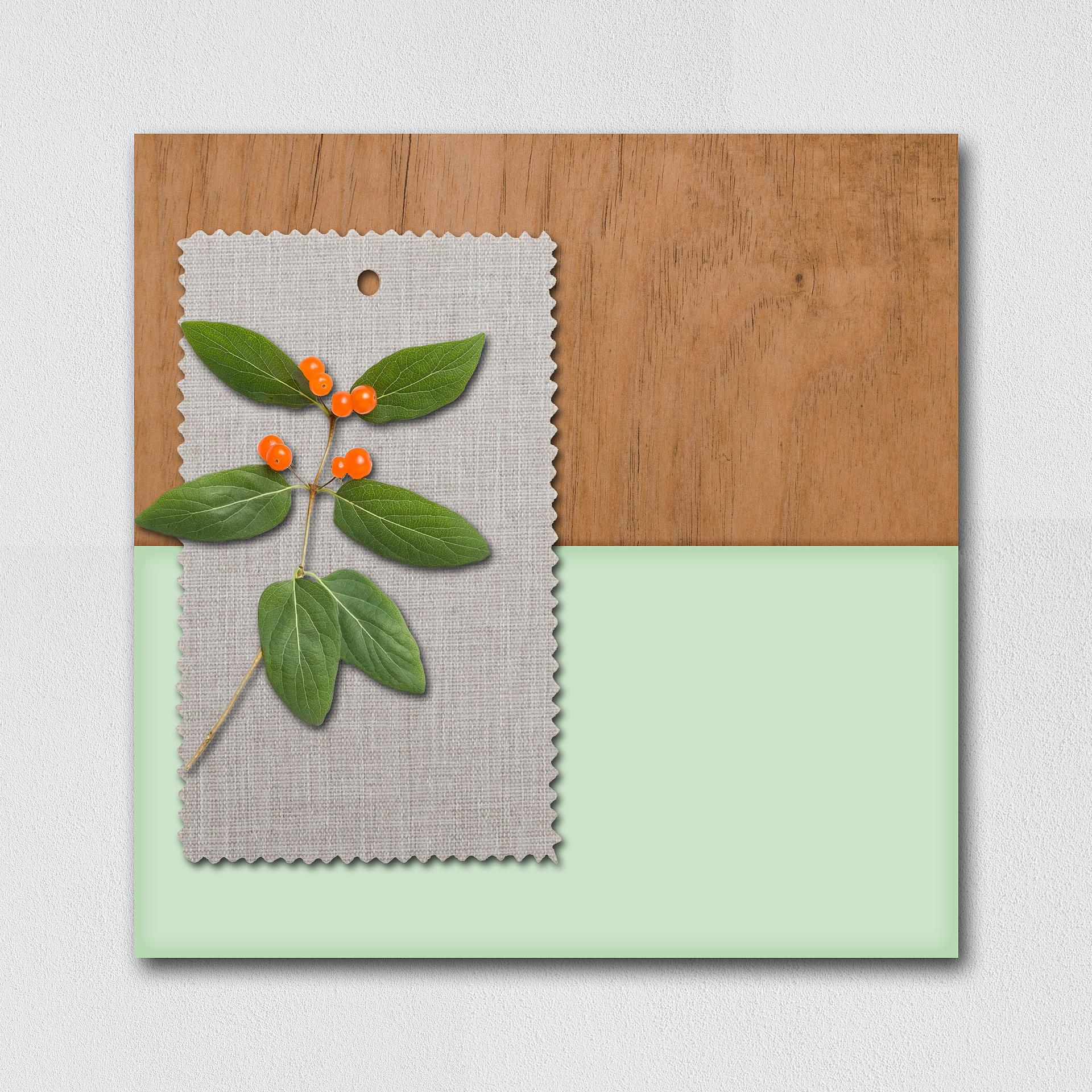 moodboard verde menta