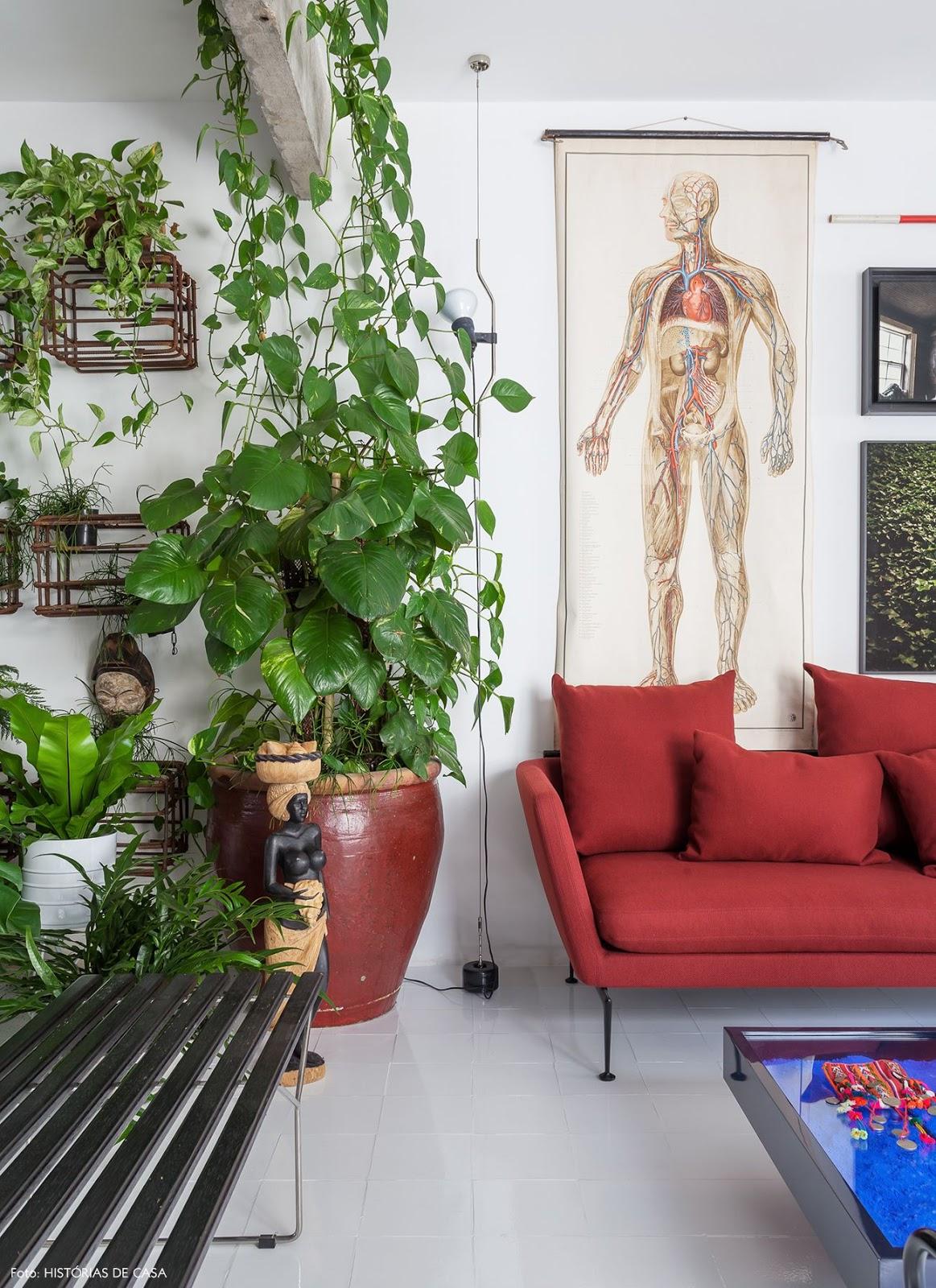 sala com plantas e sofá colorido vermelho