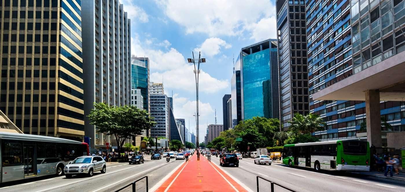 Projetos paisagísticos para a Avenida Paulista