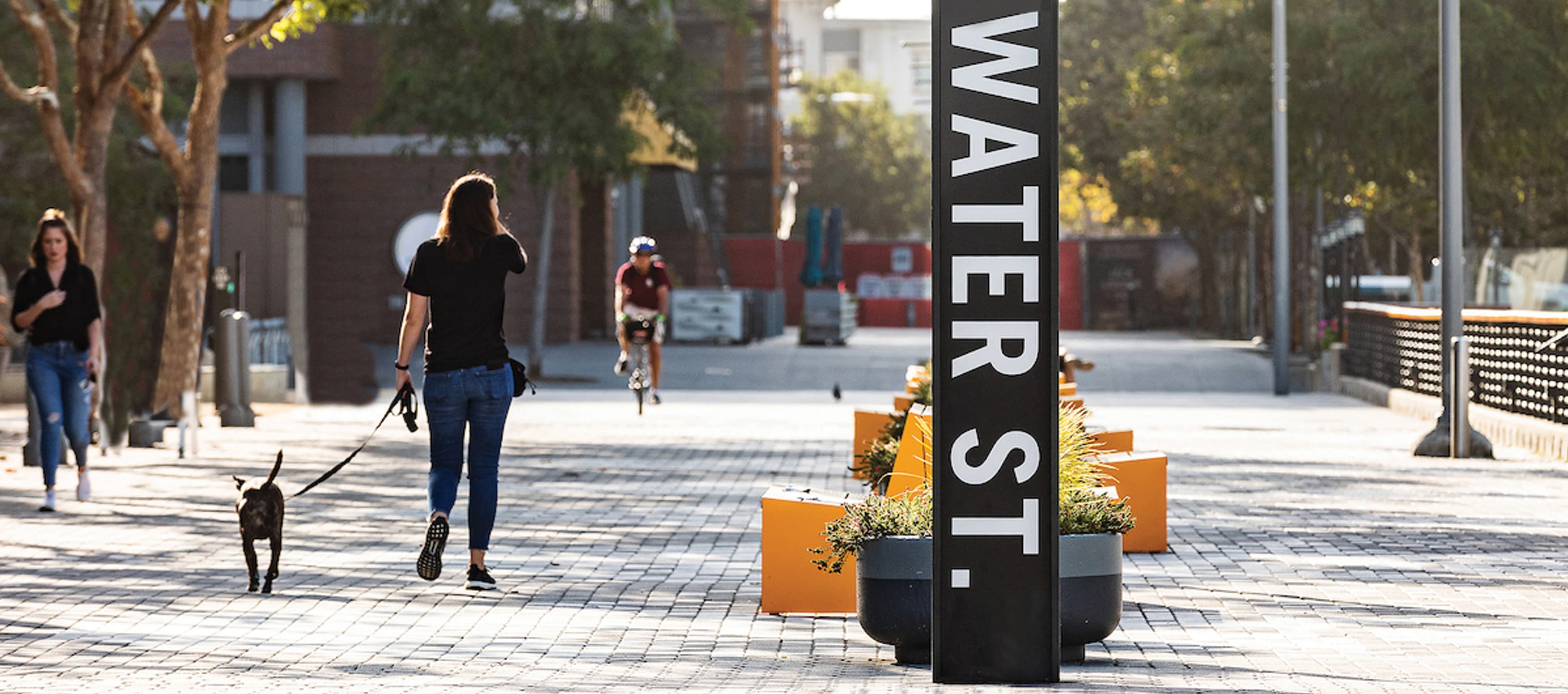 A woman walks a dog past a sign that reads Water Street
