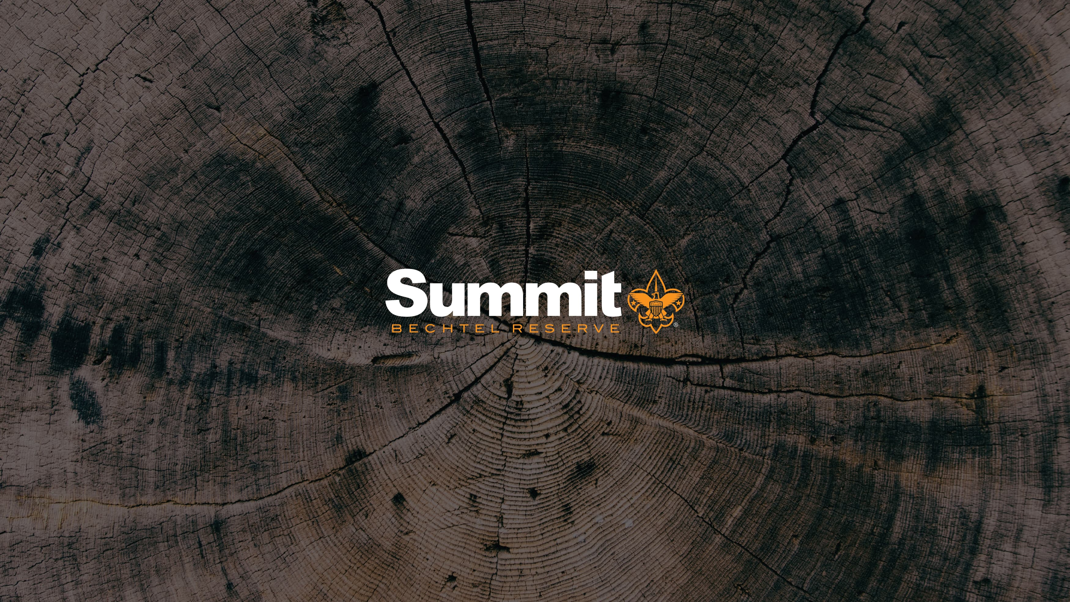 Logo for The Summit shown on top of a tree trunk texture.