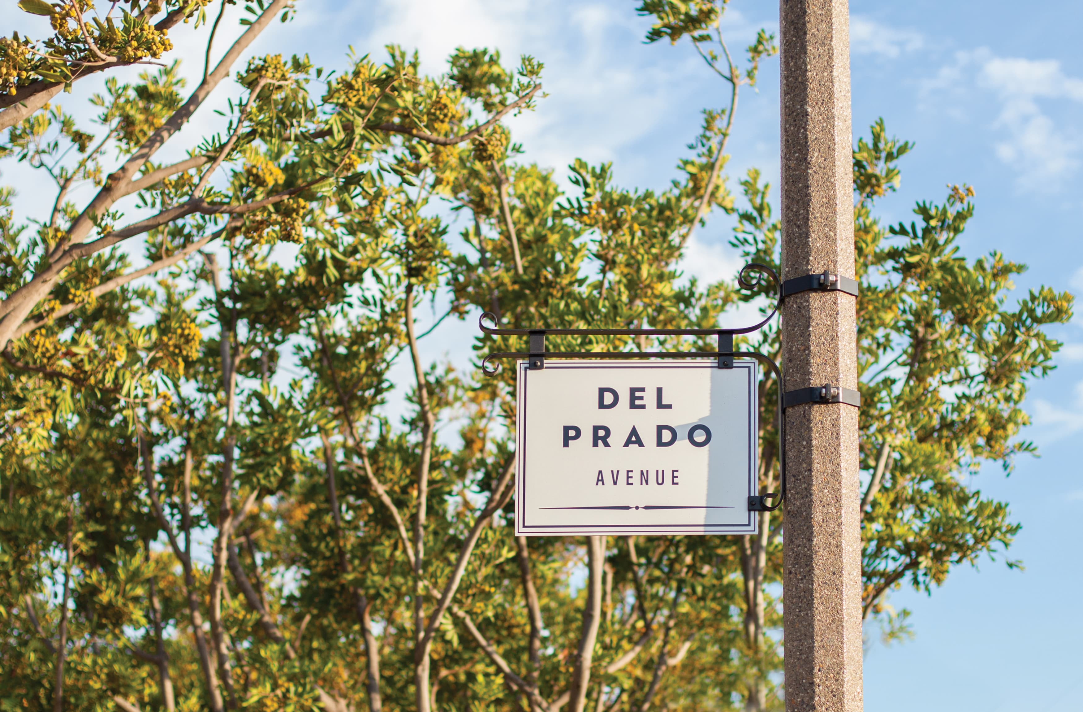 The City of Dana Point street identity sign civic design
