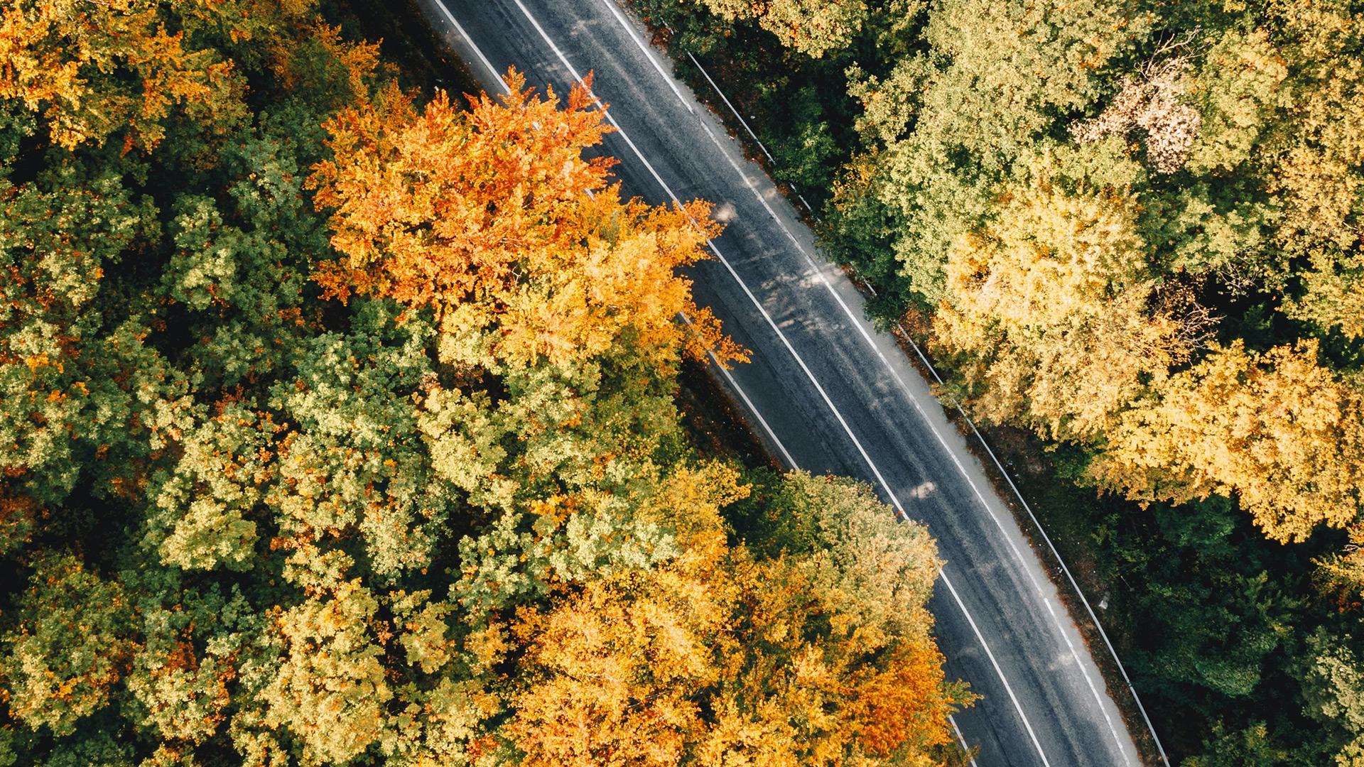 Romanian winding road