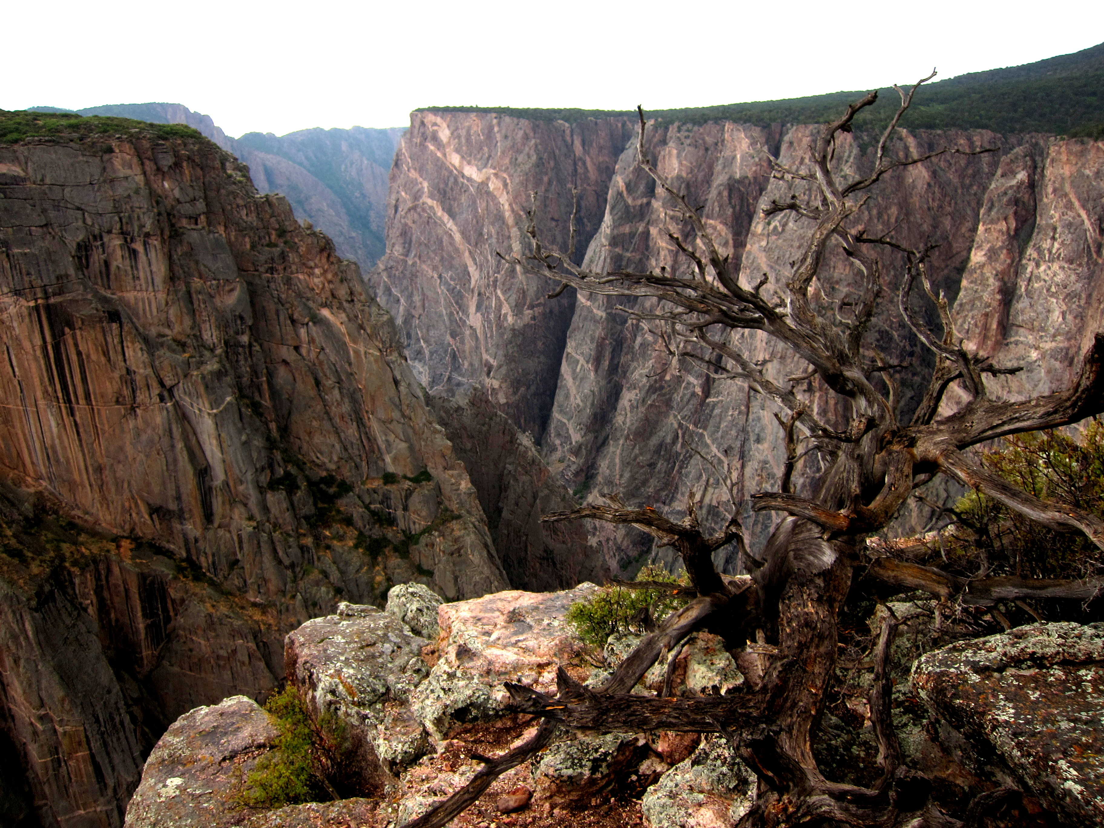 Black Canyon Photo
