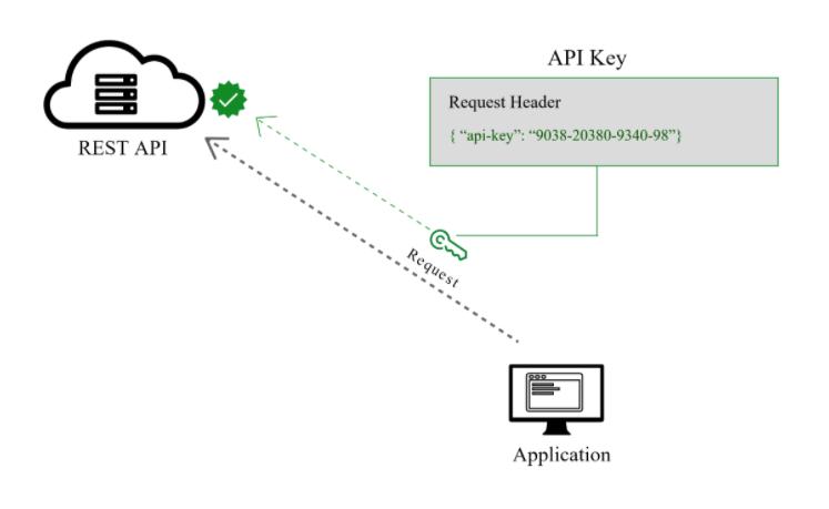 API Key Authentication