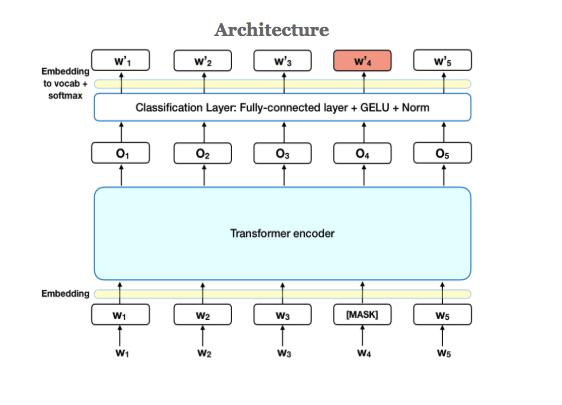 Architecture of BERT analysis
