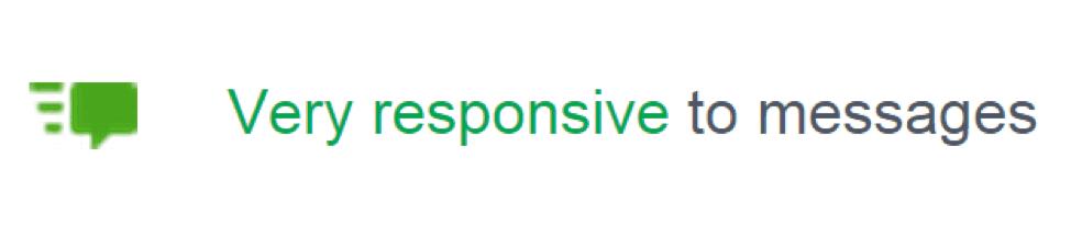 facebook responsive badge