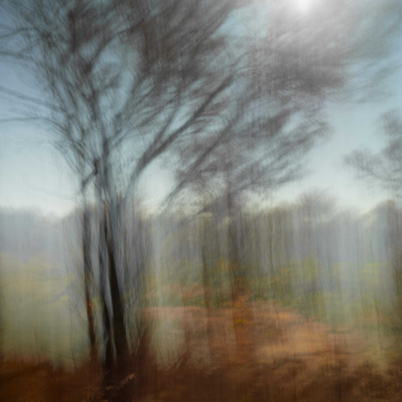"Havell ""The Art of Nature""   Karijini"