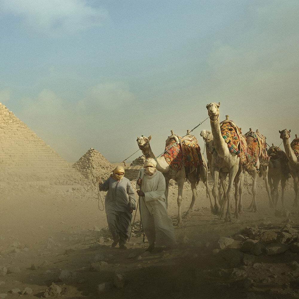 Follow Al Safar, in the footsteps of Ibn Battuta